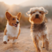 two happy dogs running alongside eachother