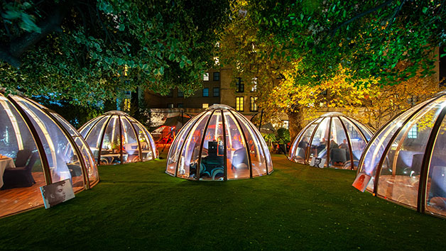 The Domes At London Secret Garden Kensington