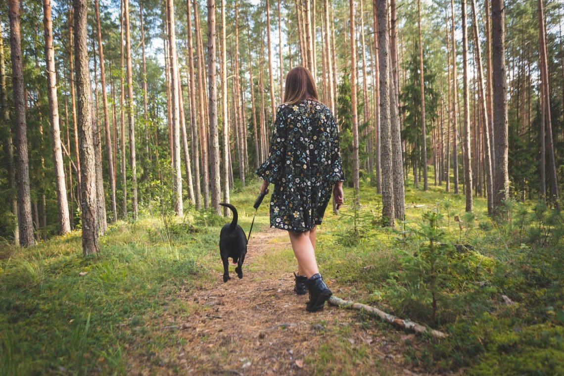 lady and a dog on a woodland walk